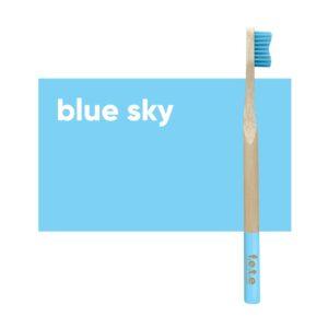 fete adult toothbrush blue skye soft 1