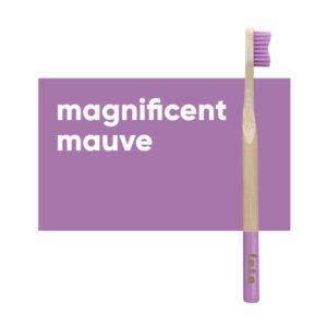 fete adult toothbrush mauve soft 1