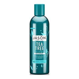 jason tea tree shampoo 1