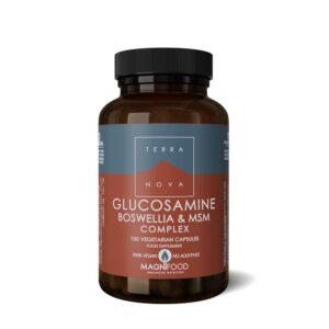 terranova glucosamine boswellia msm complex caps wiz