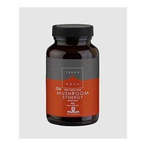 terranova mushroom synergy wiz